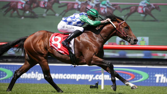 Fifty Stars passes Sandown audition but Weir opts not to go to Perth