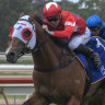 Tips and race-by-race preview of Wyong on Saturday