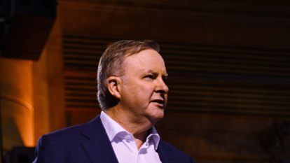 Albanese calls on government to apologise for 'illegal' robodebt scheme