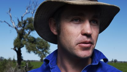 'Too little too late': Farmers welcome rain but much more needed