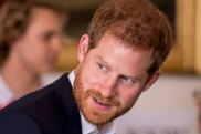 Britain's Prince Harry would certainly shake up the role of GG.