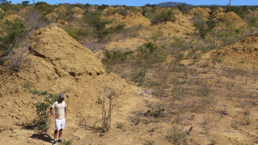 A vast field of termite mounds, now estimated by ecological researchers to number some 200 million, in a remote area of northeast Brazil.