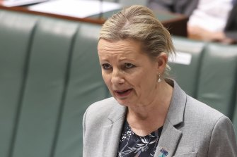 Environment Minister Sussan Ley.