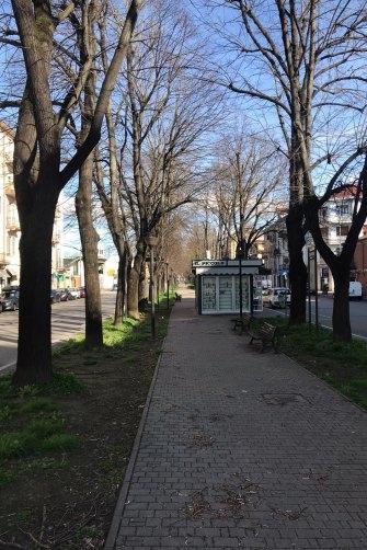 The empty main street of Alessandria.