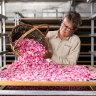 Settle petal: Why the Jurlique rose is worth bottling