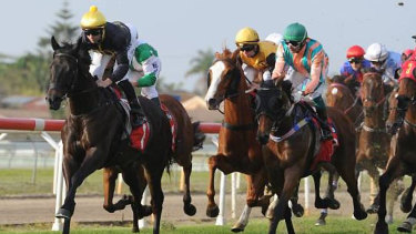 A good track is expected for Monday's seven-race card at Taree.