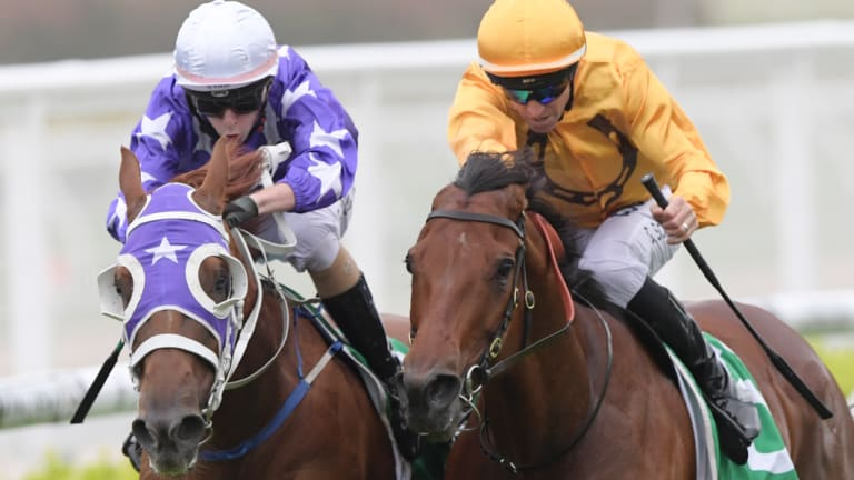 Making his mark: Robbie Dolan scores on Gresham, left, at Randwick last week, one of two winners on the day.