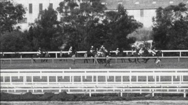 No barrier for Bart: The flag start of the 1984 Missile Stakes.