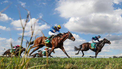 Race-by-race preview and tips for Scone on Tuesday