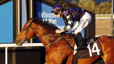 Racing heads to Scone on Thursday with an eight-race card.