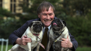 Anggota parlemen konservatif David Amess dengan anjing pugnya, Lily dan Boat.