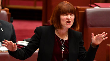 WA Greens Senator Rachel Siewert has tried five times over the past 14 years to increase Newstart payments for job seekers.