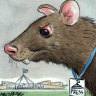 Letting the rats in the ranks of the Fourth Estate
