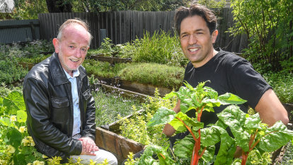 Lettuce eat: Attica chef creates edible garden for retirement home residents
