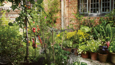 Terracotta pots teeming with produce in the Great Dixter courtyard.