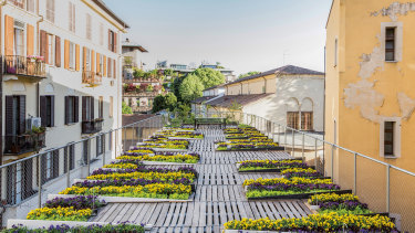 Food growing on a Milan rooftop in a garden designed by the architecture and design studio, Piuarch, from <i>The Gardens of Eden</i>.