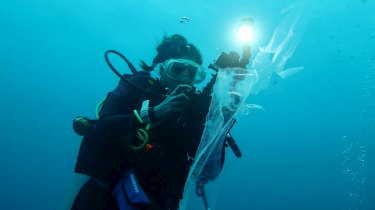 Latika Bourke swims among plastic in the Banda Sea at Wakatobi Marine Park in Indonesia.