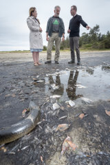 Greens Candidates Abigail Boyd and Will Douglas with Greens MP David Shoebridge at Meringo Lagoon.