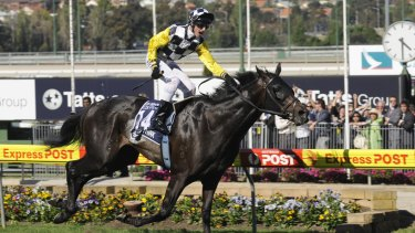 So he thinks: Glen Boss hasn't ridden at 49kg in almost a decade since So You Think's first Cox Plate win.