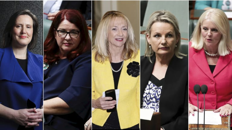 Possible Liberal House of Representatives MPs after the next election.