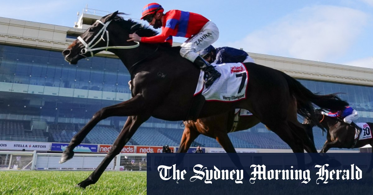 Melbourne Cup 2020: Max Presnell's horse-by-horse guide