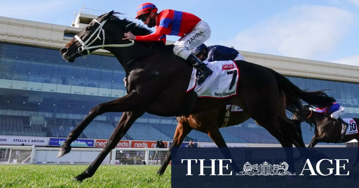 Max Presnell's horse-by-horse guide to the Melbourne Cup field – The Age