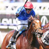 Overseas raiders have upper hand in Melbourne Cup weight game