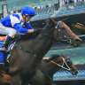 Cheap buy Rocketing By proves love conquers all in $1 million sprint