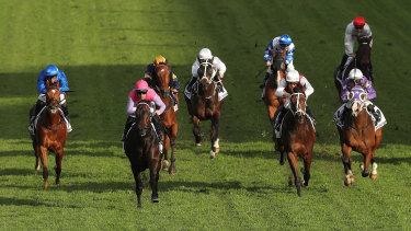 Trumbull charges away from his Civic Stakes rivals last start.