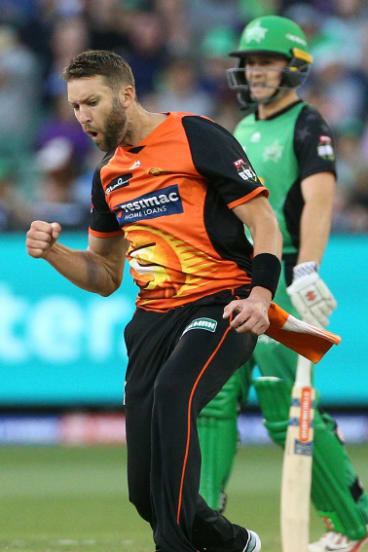 Andrew Tye of Perth Scorchers celebrates the wicket of Dwayne Bravo of Melbourne Stars.