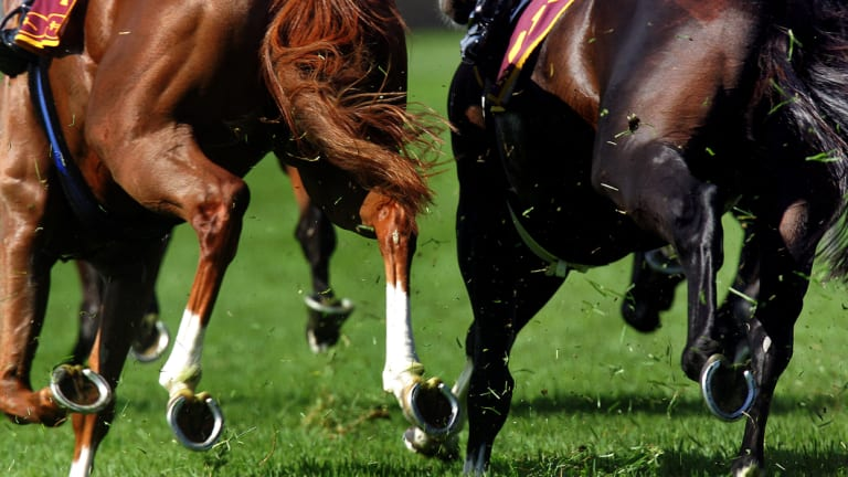 Gold: Racing returns to  the central west today for the Dubbo Cup meeting.