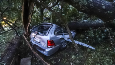 A woman survived being trapped in this car as Hurricane Michael battered Florida.