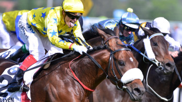 Craig Williams partnered Dunaden to victory in the 2012 Caulfield Cup.