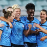 Silky Sky Blues stroll to another W-League derby victory