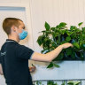 Offices are deserted but green-thumbed army bring love to lonely plants