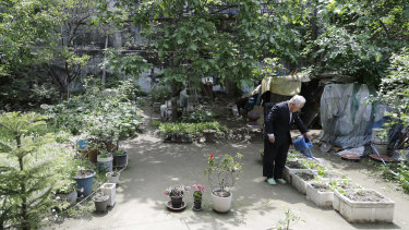 Kim Young-sik, 85, waters his garden after his interview in Seoul.
