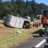 Horse freed from truck crash on Sunshine Coast