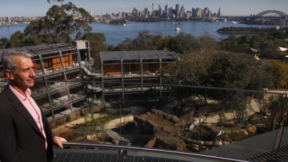 Room with a view in Taronga Zoo