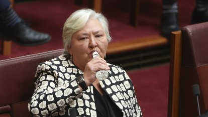 Senator 'maggoted' in late-night sitting draws criticism from colleagues