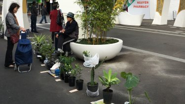 Traders sell homegrown herbs and vegetables and pot plants.