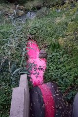 The stormwater drain is pictured on Wednesday, before pink sediment had discoloured the creek.