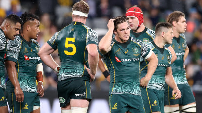 Cursed Hodge misses again as Wallabies draw with Argentina