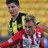 Early Phoenix goal sinks Melbourne City