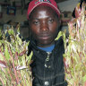 A young Kenyan holds bundles of khat in a small kiosk, in Nairobi, Kenya.