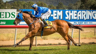 Racing returns to the central west with a seven-race card at Wellington.