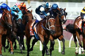 Blue Diamond winner Tagaloa lines up in Saturday's Caulfield Guineas.