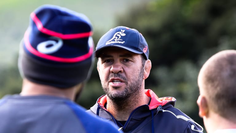 Beleaguered: Michael Cheika is getting on with the job ahead of Bledisloe II in Auckland this weekend.
