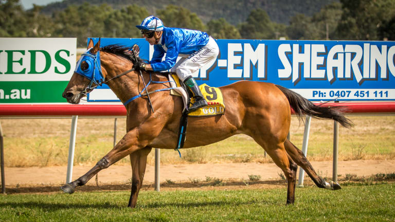 Boots and all: Racing returns the central west at Wellington today.
