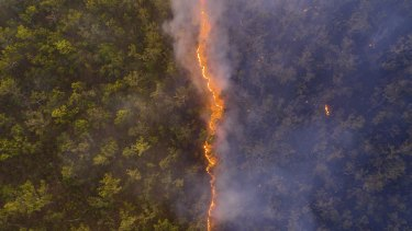 A drone photo of a bushfire front in Cape York taken by Robert Irwin.