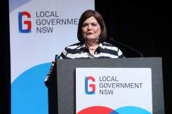 Local Government Minister Shelley Hancock says voters will be able to vote in-person, online and via post in December.
